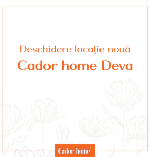 Banner_Deschidere_Deva_6
